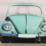 photocall-escarabajo